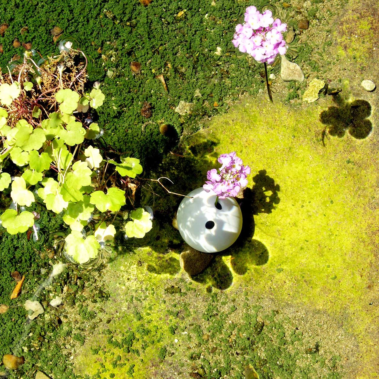 Laure-Maud_06_photographe_jardin_Brindi_3