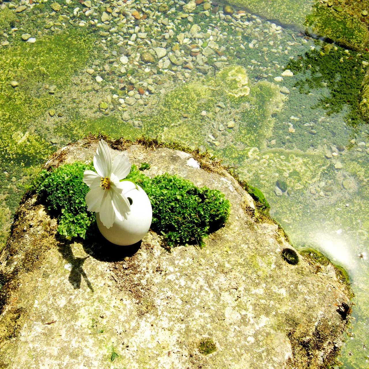 Laure-Maud_18_photographe_jardin_Brindi_2